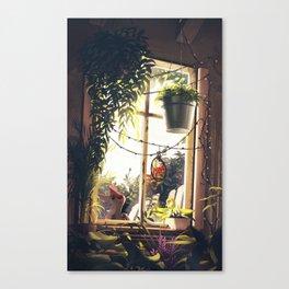 privy Canvas Print