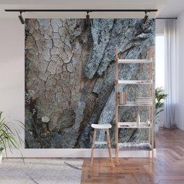 Eucalyptus Tree Bark and Wood Texture 15 Wall Mural