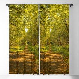 Woodland Views. Blackout Curtain