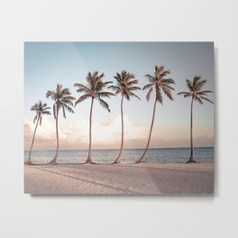 Palmtree Sunset // A Modern Artsy Style Graphic Photography of Palm Leaf Line Sunset View Metal Print
