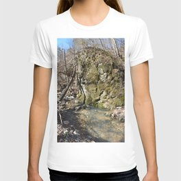 Alone in Secret Hollow with the Caves, Cascades, and Critters, No. 11 of 21 T-shirt