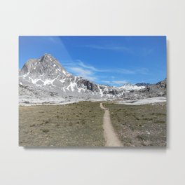 One Path Metal Print
