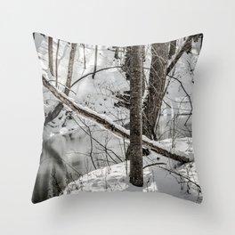 Winter Woods & Creek Throw Pillow