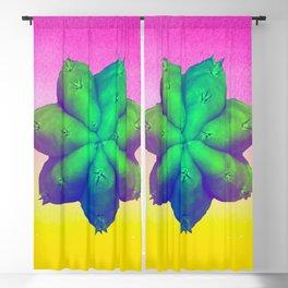 San Pedro Pachanoi Cactus Art Blackout Curtain