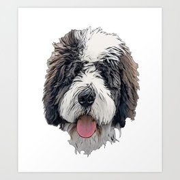 The Saint Berdoodle Crossbreed proud savy old dog Art Print