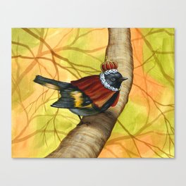 King of the Woodland Realm Canvas Print
