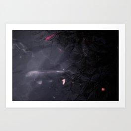 鯉 koi Art Print