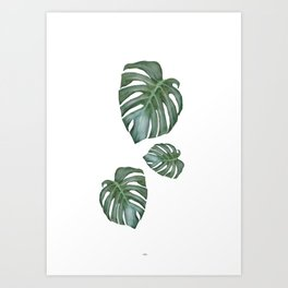 Monstera The Tree Art Print