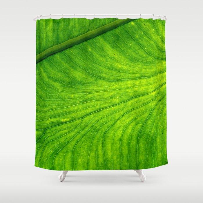 Leaf Paths Shower Curtain