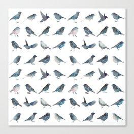 Sparrow Pattern Canvas Print