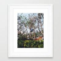 nan lawson Framed Art Prints featuring Pruning in Nan Lian by Diana Basto Ferreira