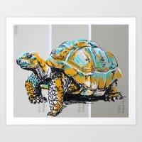 tortoise Art Prints featuring Tortoise by aceta