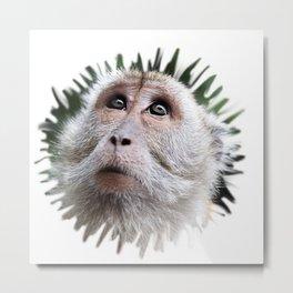 Adorable monkey Metal Print