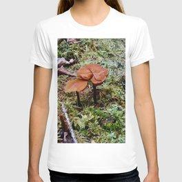 Little Worlds Inside our World T-shirt