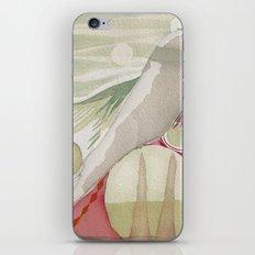 Intuit iPhone & iPod Skin