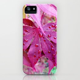 Red Maple Tree iPhone Case