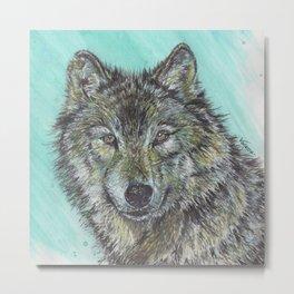Timber Wolf - Wild Dog Metal Print