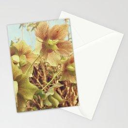Spring Hellebore Stationery Cards