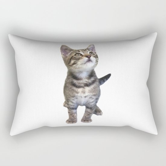 Tabby Kitten by misimichu