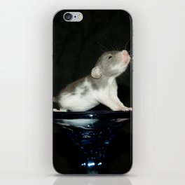 Baby dumbo rat iPhone Skin