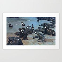 Costellazione delle Galapagos Art Print