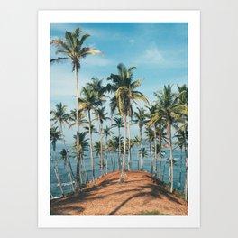 Palm trees 4 Art Print