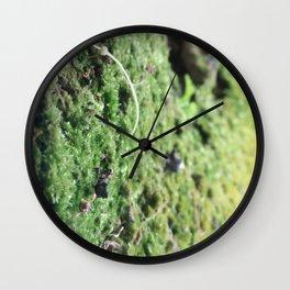 Moss Forest Wall Clock