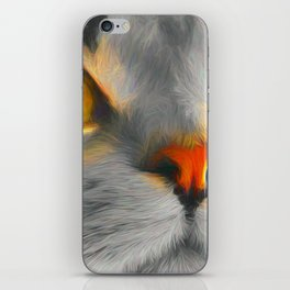 Big gray cat iPhone Skin