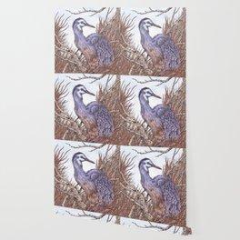 White Faced Heron Wallpaper