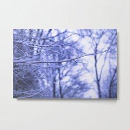 snowdream Metal Print