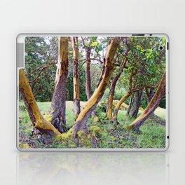 MAGIC MADRONA FOREST Laptop & iPad Skin