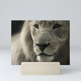 Lion Animal Portrait Africa Mini Art Print