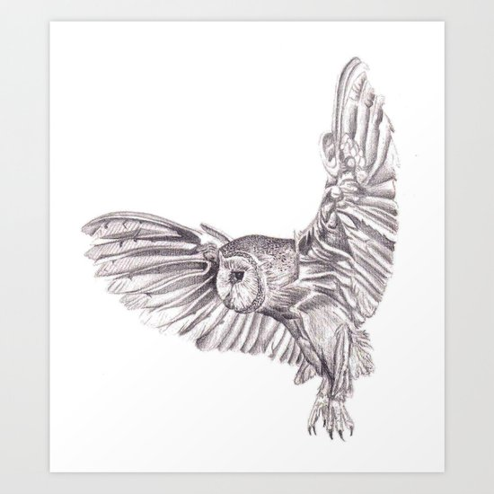 Pencil Drawing - Owl in flight Art Print