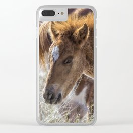 Salt River Sleepy Foal Clear iPhone Case