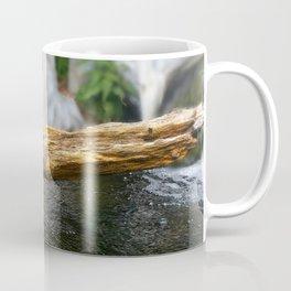 Turtle on a Log Coffee Mug
