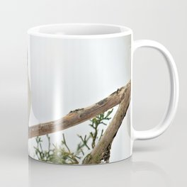 I Am Titmouse. Hear Me Roar! Coffee Mug