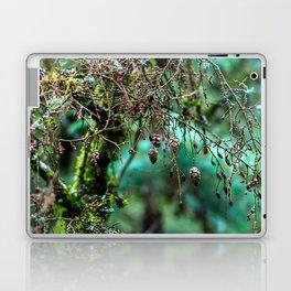 Little Pinecones Laptop & iPad Skin