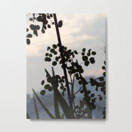 Shadowy rose leaves Metal Print