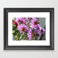 Two Busy Bees on Violet Flowers Framed Art Print