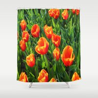 switzerland Shower Curtains featuring Tulips in Switzerland by Rachel Bernz