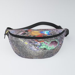 Where Shall We Go Today? Fanny Pack