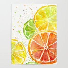 Fruit Watercolor Citrus Poster