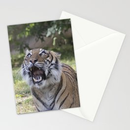 Mouthy Tiger Stationery Cards