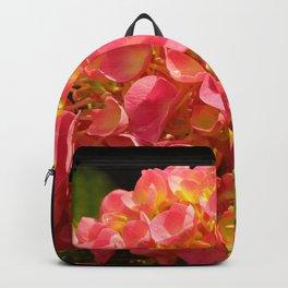 Honeydew Hydrangea by Teresa Thompson Backpack