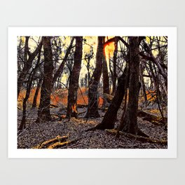 In the Prater Woods Art Print