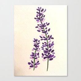 Watercolour Lavender Canvas Print