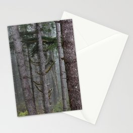 Foggy Forest Wanderlust Adventure II - 115/365 Nature Photography Stationery Cards