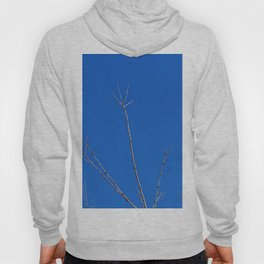 Tree Reaches for the Sky, with a Bony Hand Hoody