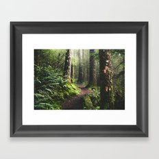 Oregon Pathway Framed Art Print