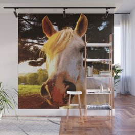 Sun horse Wall Mural
